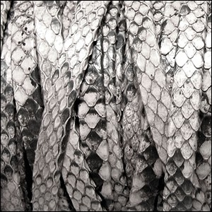 5mm flat PYTHON leather NATURAL GREY - per 1 meter