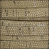 10mm flat GALAXY leather OLIVE - per 2 meters