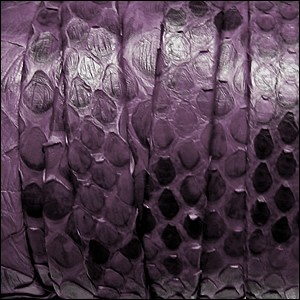 10mm flat PYTHON leather PURPLE - per 10m SPOOL