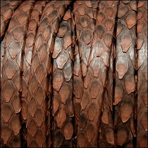 5mm flat PYTHON leather BROWN - per 1 meter