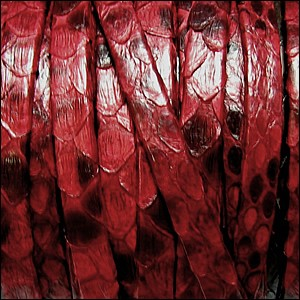 5mm flat PYTHON leather RED - per 1 meter